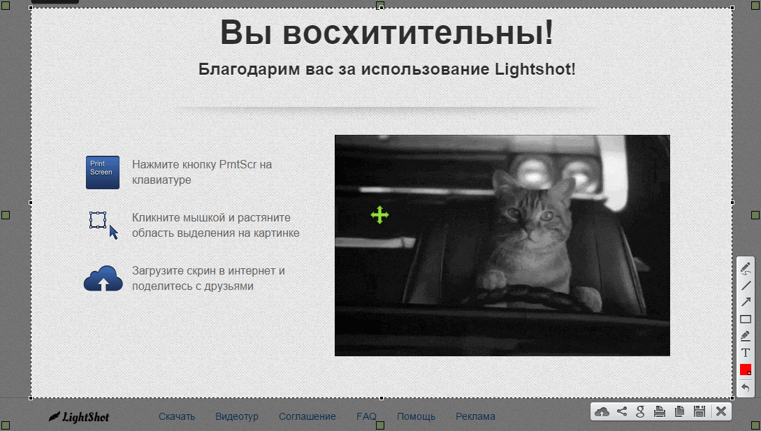 LightShot - программа для скриншотов ЛайтШот